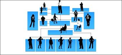 组织与岗位体系设计