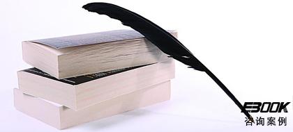 文化出版公司咨询案例