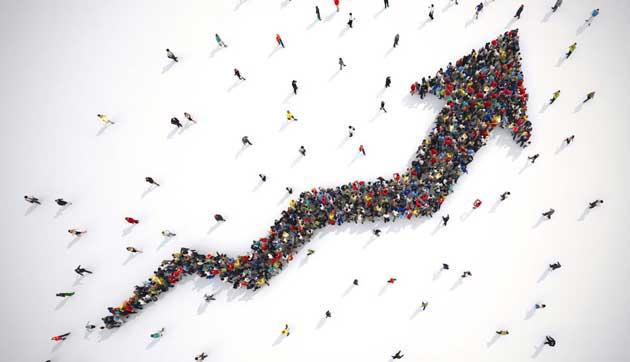 组织效能提升咨询服务